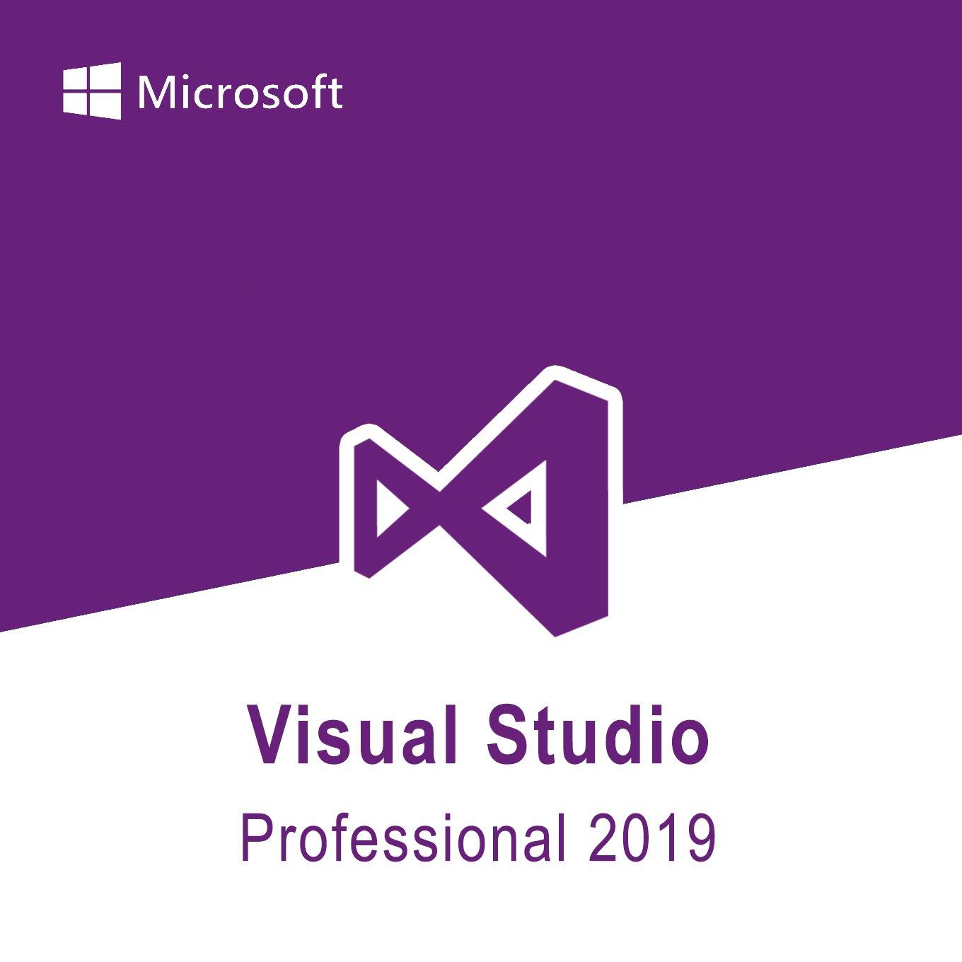 Microsoft Visual Studio Professional 2019